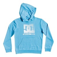 DC Shoes Kid's Evolved Hoodie Photo