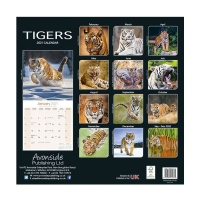 CHEF HOME Tigers 2021 Wall Calendar - Wildlife Photo