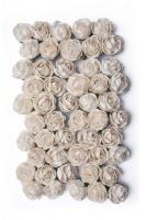Bloom Peony - Ivory Photo