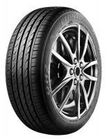 Delinte 225/55R16 99W XL DH2-Tyre Photo