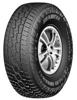 Delinte 265/70R16 110/107S AT DX-10-Tyre Photo