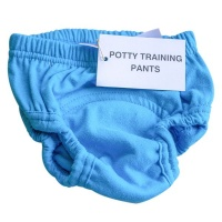 mother nature products Potty Training Pants Turquoise Photo