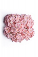 Bloom Sweetheart Blossoms - Baby Pink Photo