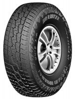 Delinte 265/65R17 112T AT DX-10-Tyre Photo