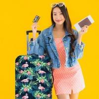 Iconix Printed Luggage Protector - Flamingo Fes - Large Photo