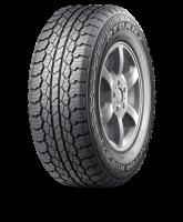 Rydanz 215/70R16 100H RAPTOR R09 AT Tyre Photo