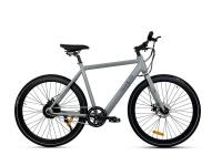 Traveler CITI E- Bike Photo