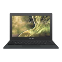 ASUS Chromebook N4020 laptop Photo