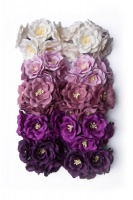 Bloom Magnolias - Purple Photo