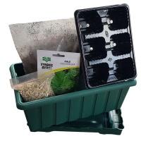 Kale Seeds Grow Kit With Pot Photo