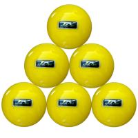 TK Hockey Tk Total Two Bix 2.5 Indoor Balls x 6 Photo