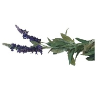 Seedleme Lavender Artificial Faux Silk Plants by Photo