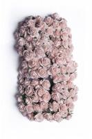 Bloom Miniature Roses - Pink Mist 1.5cm Photo
