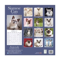 CHEF HOME Cats Siamese 2021 Wall Calendar - Cats Photo