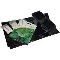 Starke Ayres Kale Plant Seed Starter Kit Photo