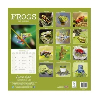 CHEF HOME Frogs2021 Wall Calendar - Amphibians Photo