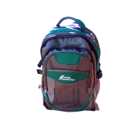 Camel mountain school backpack bag- Grey & green Photo