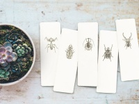 Sourcery Supply Co - BookmarKards - Beetles - 10 piece Photo