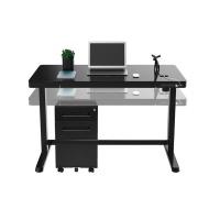 College Originals Electric Standing Desk Executive Motion Edition Photo