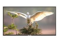 "ECCO 40"" LH40S LCD TV Photo"