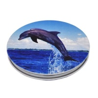 Lily Rose Lily & Rose large dolphin compact pocket mirror Photo