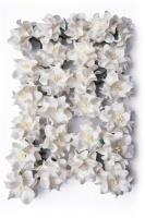 Bloom Gardenia - White 3.5 cm Photo