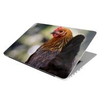 Laptop Skin/Sticker - Chicken Chicken Photo
