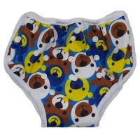 Bamboo Baby Training Pants - Bear Photo