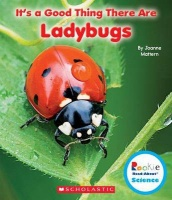 It's a Good Thing There Are Ladybugs Photo