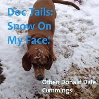 Doc Tails: Snow On My Face! Photo