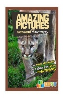 Amazing Pictures and Facts about Panthers Photo