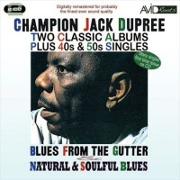 Blues from the Gutter/Natural & Soulf - Photo