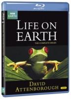 Life On Earth Photo
