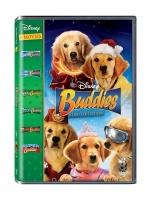 Buddies Box Set Photo