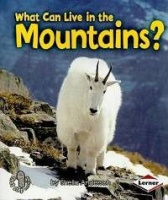 What Can Live in the Mountains? Photo