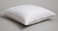 Carrol Boyes Cushion Inner - Polyester Photo