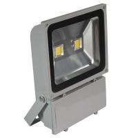 100W 12V LED Flood Light - White Photo