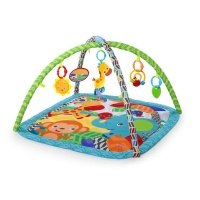 Bright Starts - Zippy Zoo Activity Gym Photo