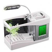 Fascinating Desktop Fish Tank Aquarium With Clock And Thermometer - White Photo