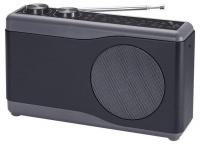 Portable Radio 230V - Black Photo