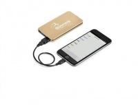 Best Brand Creative Travel Voltage Power Bank & USB - 4000mAh - Gold Photo