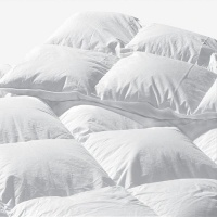 Miss Lyn Duck Feather/Down Duvet Inner Extra Thick Photo