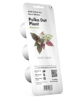 Click and Grow Polka Dot Plant Refill for Smart Herb Garden - 3 Pack Photo