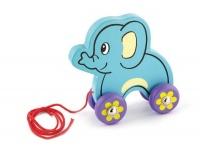Viga Pull Aong Elephant Photo