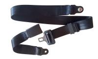 2 Point Lap type belt with stalk Photo