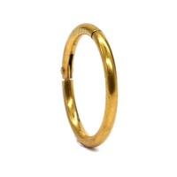 Steel My Heart Hinged Segment Hoop Ring - Gold 12mm Photo