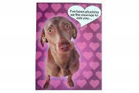 I've been Plucking up the Courage to ask you Valentines Card Photo