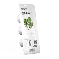 Click and Grow Red Kale Refill 3-Pack for Smart Herb Garden Photo