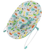 Bright Starts Vibrating Baby Bouncer - Jungle Jumble Photo