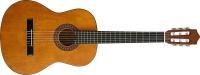 Caraya C950n Classical Nylon Guitar Photo